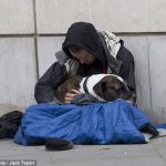 Dog teaches beggar become a richer