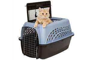 Best Cat Travel Carrier